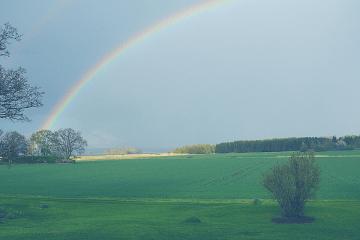 positivity-rainbow-social-media