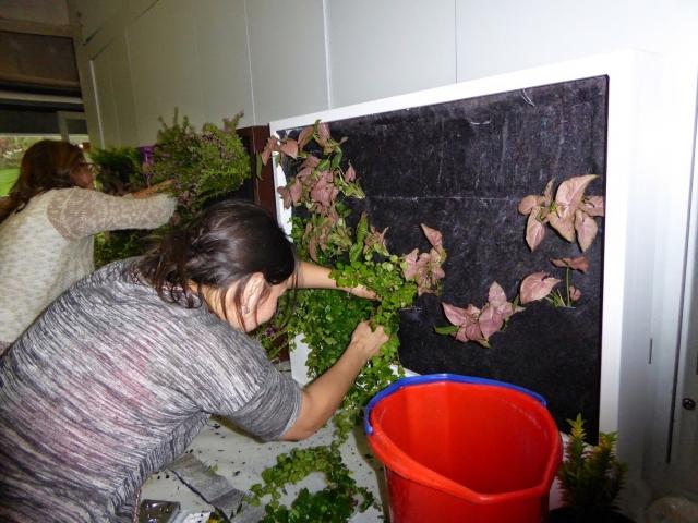 Cursos de jardines verticales y cubiertas vegetales