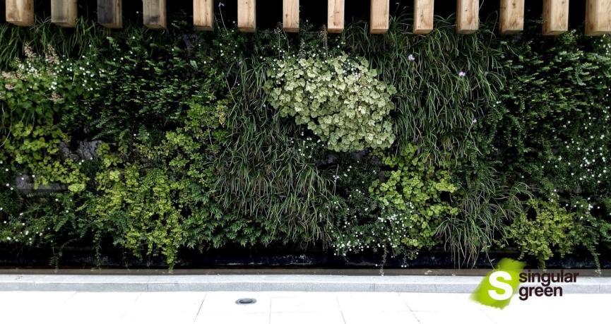 Jardín Vertical hidropónico en Bilbao