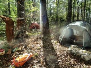 Tihožitje pred Grdinovim šotorom