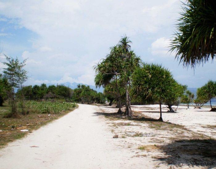 Camino en Gili Trawangan