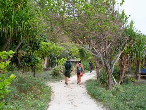 walking-down-the-road Encuentros y reencuentros durante mi viaje por el Sudeste Asiático