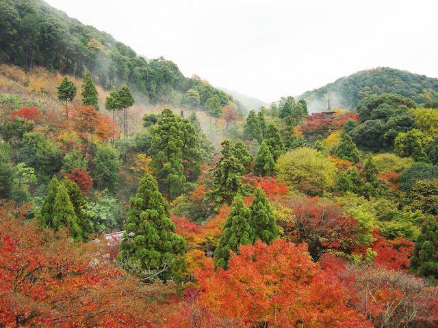 Kioto tours de Google Street View