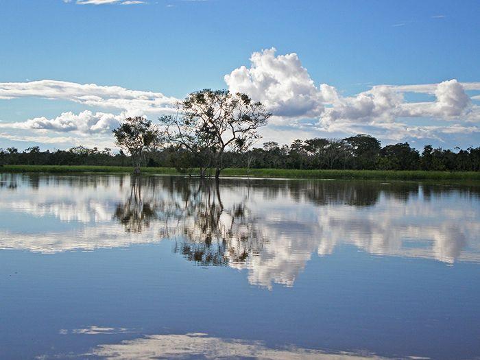 "Reserva nacional Pacaya Samiria - ""La selva de los espejos"""