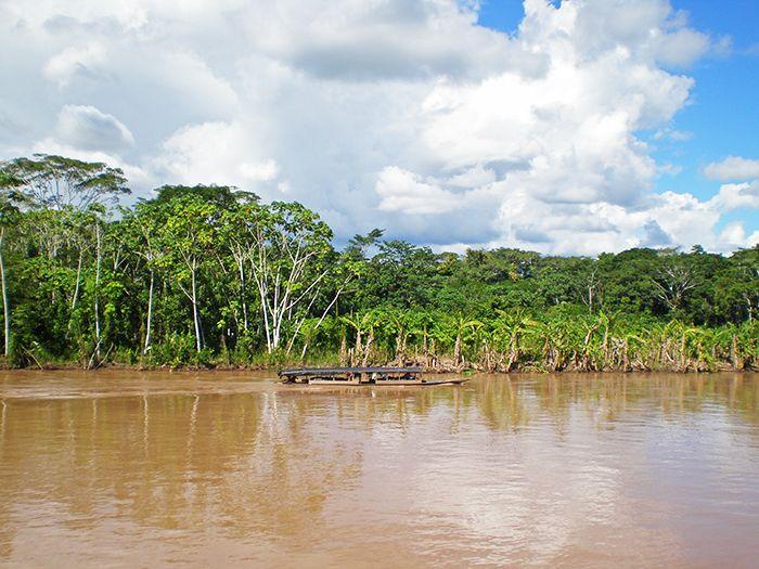 Amazonia Peru Amazonas