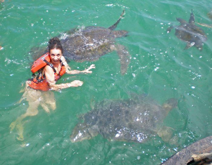 Nadar con tortugas - Qué ver y qué hacer en Máncora - Playas - Perú - Sudamérica