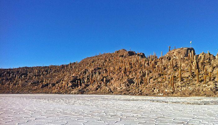 Isla Pescado - Salar de Uyuni