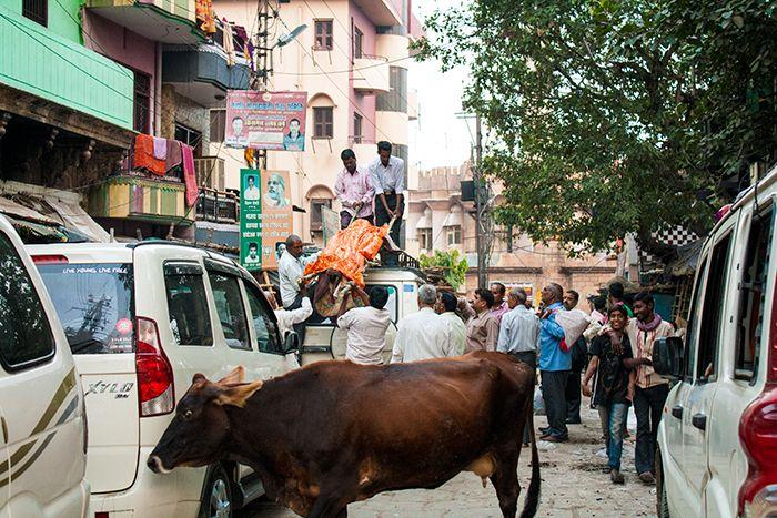 Cremaciones en Varanasi Bajando un cuerpo de la baca de un coche para llevarlo al Ghat crematorio