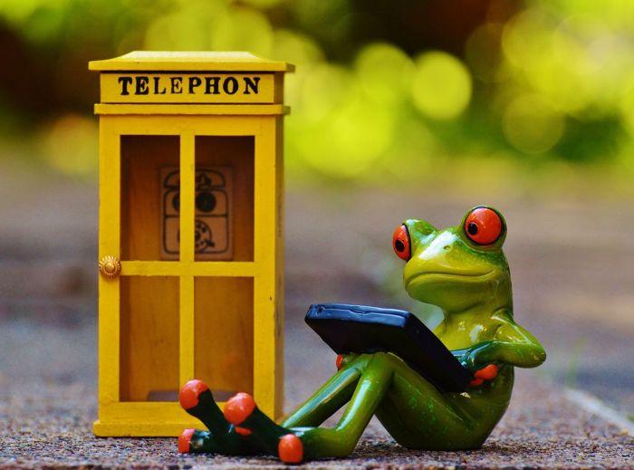 rana-telefono-movil-web