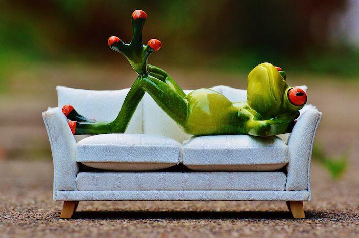 Rana_sofa-frog_Hostel_couchsurfing_AirBnB