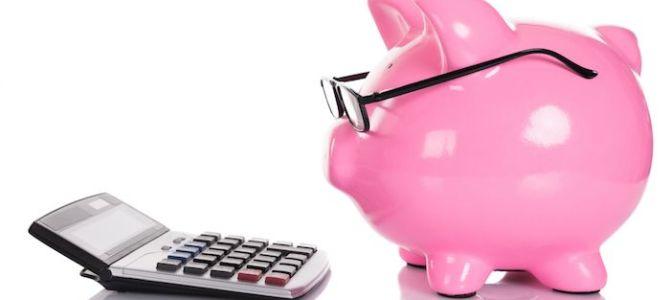 Presupuesto para viajar a India por libre