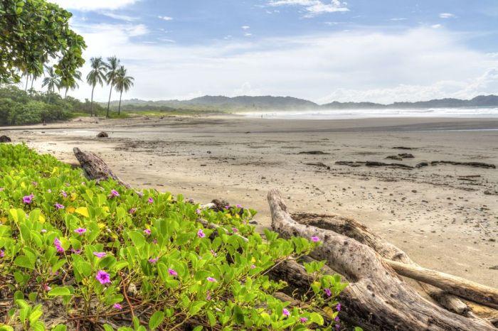 Playas de centroamérica. Playa Guiones, Nosara en Costa Rica