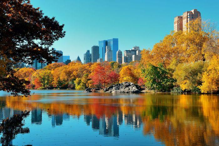 Central Park en otoño, NYC