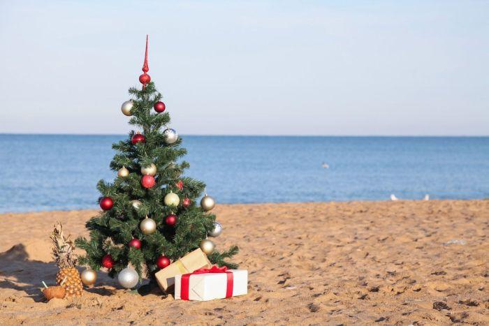 Arbolito navideño en la playa