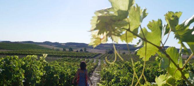Descubre los pueblos con encanto de La Rioja