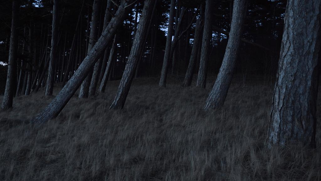 Photo: © Gustaf Emanuelsson