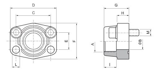 SAE BSPP thread flanges drawing