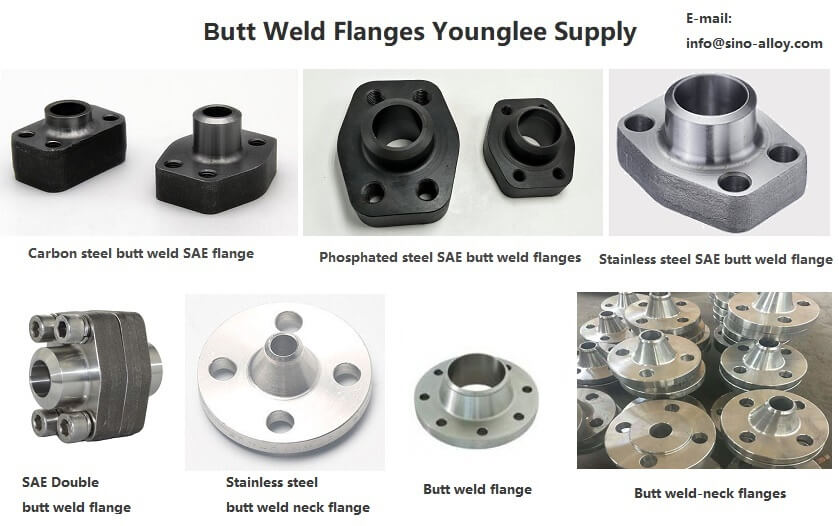 Butt weld flanges-factory-manufacturer