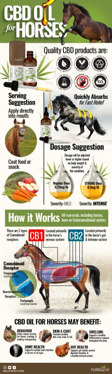 Holistapet CBD Oil for Horses Quality Stamps