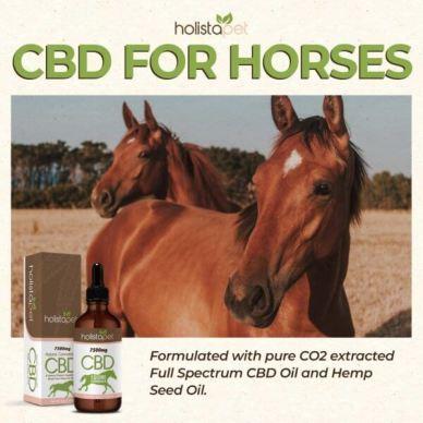 Holistapet CBD Oil for Horses uses