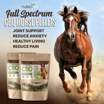 Holistapet CBD Horse Pellets Uses and Benefits