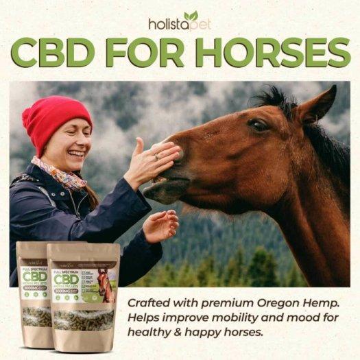 Holistapet CBD Pellets for Horses Benefits