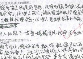 Juristenchinesisch, aber wirklich