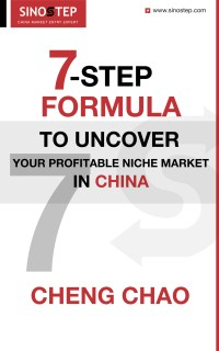 7-Step Formula to Uncover Your Profitable Niche Market in China
