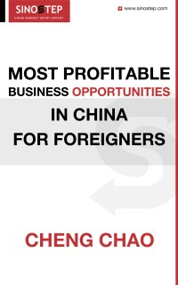 Most Profitable Business Opportunities in China for Foreigners