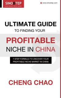 Ultimate Guide to Finding Your Profitable Niche in China