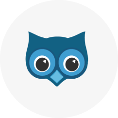 SendOwl Send Digital Products China