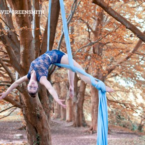 Forest Aerial Silks Siobhan Johnstone