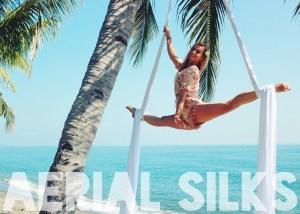 SiobhanJohnstone.com Aerial Silks