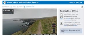beautiful Scotland - st abb's head national nature reserve