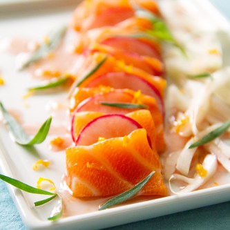 salmon belly crudo
