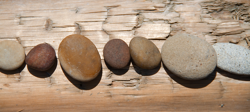 Lummi Island Beach Rocks