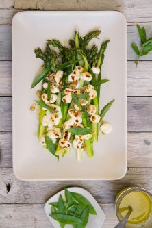 Asparagus with Mozzarella and Lemon Verbena Vinaigrette