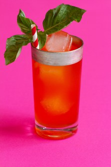 Gin Aperol Summer Sour