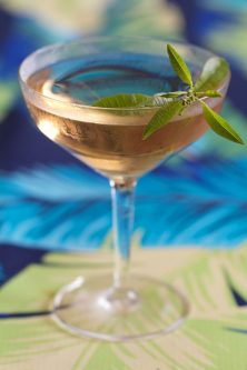 Home-Grown Lemon Verbena Vesper Martini