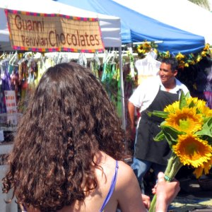 sunflowers at the hollywood farmers market