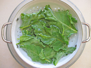 how to wash beet greens