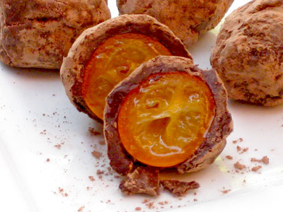 chocolate covered citrus kumquats
