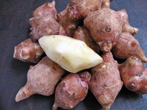 peeled jerusalem artichoke sunchoke