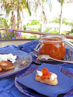 san diego patio with tomato jam