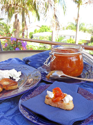 san diego patio with tomato jam