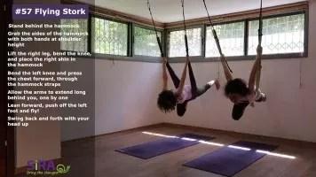 Flying Stork – exercise #57