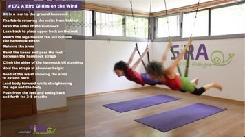 A Bird Glides on the Wind – exercise #172
