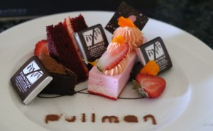 D-hotel-pullman-2208