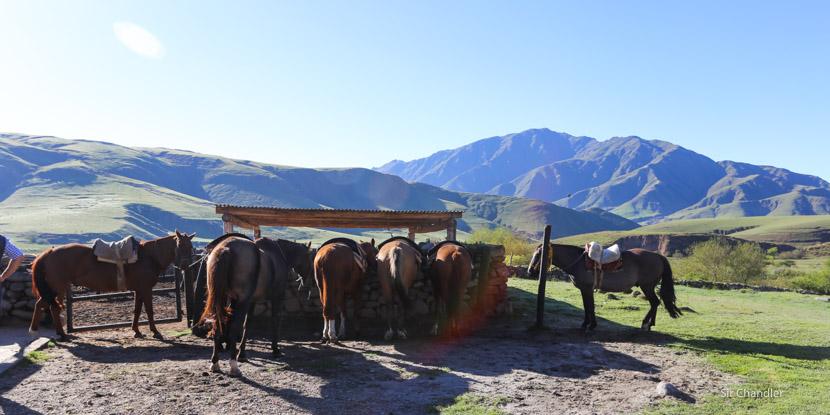 Una cabalgata en Tafí del Valle