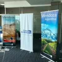 COPA pasa a diario el vuelo de Mendoza